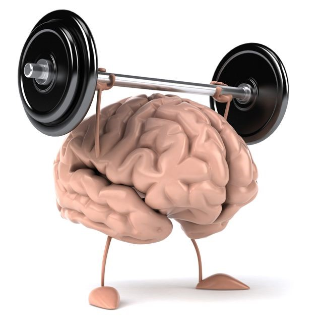 Choline Is An Essential Nutrient That Can Increase Both Muscle Strength and Brain Function